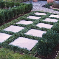 Mondo grass & Pavers